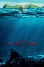 The Shallows 2016