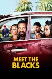 Meet the Blacks 2016