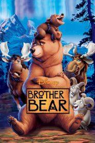 Brother Bear 2003