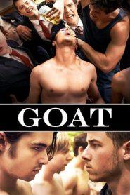 Goat 2016