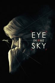 Eye in the Sky 2015
