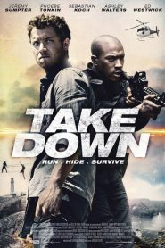 Take Down 2016