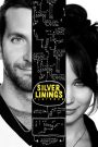 Silver Linings Playbook 2012