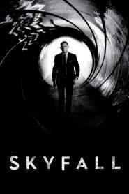 Skyfall 2014