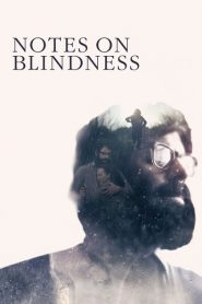 Notes on Blindness 2016