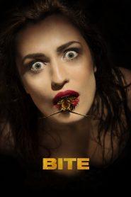 Bite 2015