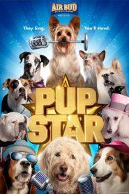 Pup Star 2016