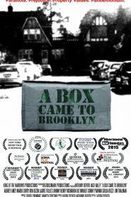 A Box Came to Brooklyn 2015