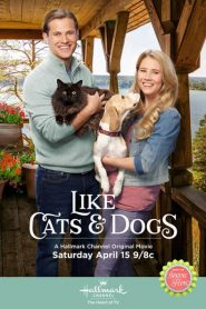 Like Cats & Dogs 2017