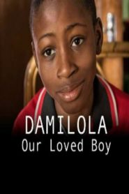 Damilola, Our Loved Boy 2017