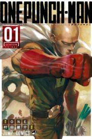 One-Punch Man: Season 1