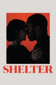 Shelter 2015