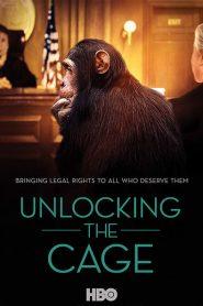 Unlocking the Cage 2016