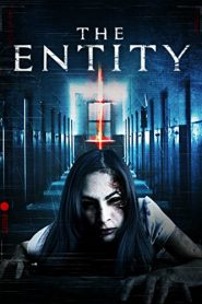 The Entity 2015