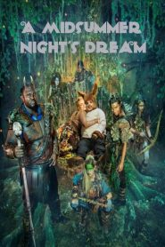 A Midsummer Night's Dream 2016