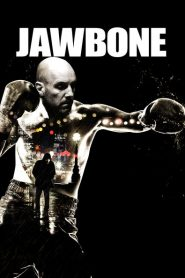 Jawbone 2017