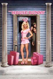 The House Bunny 2008