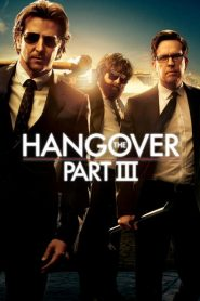The Hangover Part III 2013
