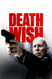 Death Wish in Hindi Dubbed
