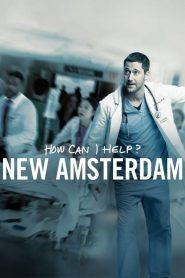New Amsterdam: Season 1