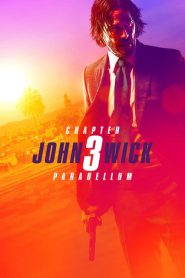 John Wick: Chapter 3 – Parabellum ( In Hindi )
