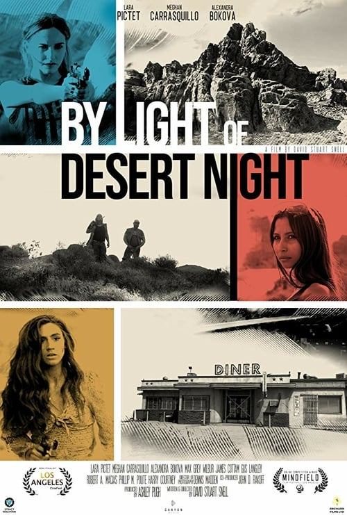 By Light of Desert Night